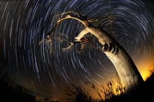 yıldız fotoğrafı 1
